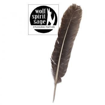 Wolf Spirit Sage – Turkey Feather