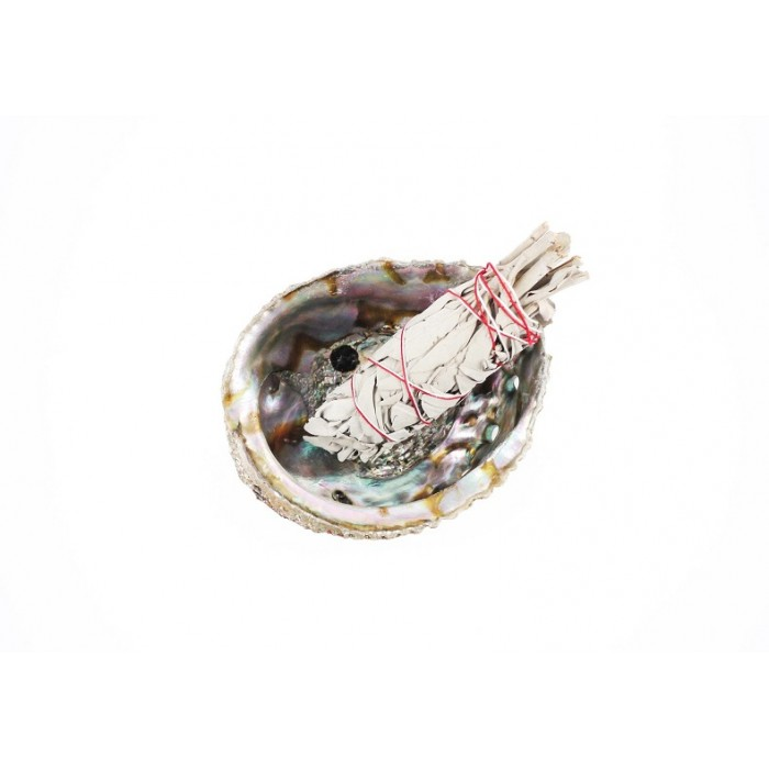 Sage Smudging Kit w/ Abalone Shell